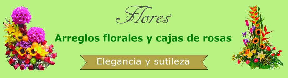 Arreglos de flores novedosos y hermosos, envíalos en todo Bogotá